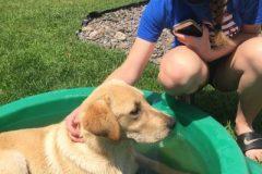 Rover-Puppy-Mentor-Teen-Maiya-400x516-1
